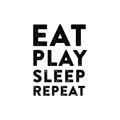 Eat Play Sleep Repeat wall decal
